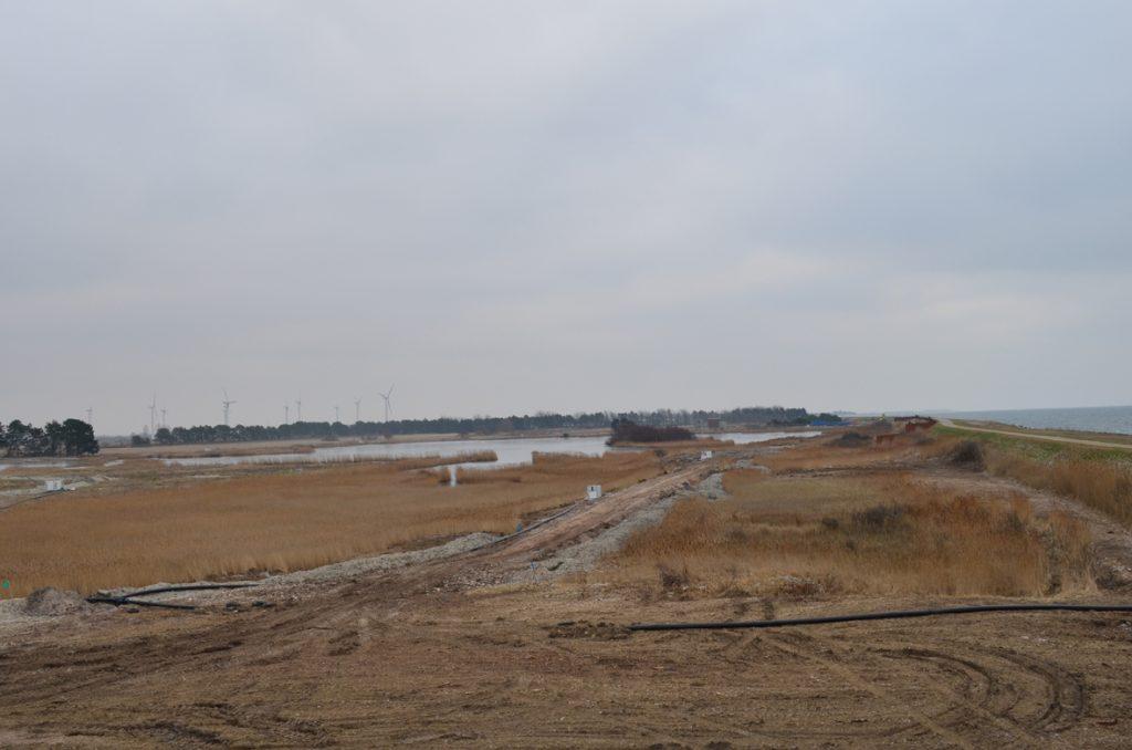 Strandholm sø set fra udsigtsplatform